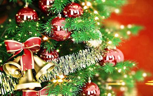 Несколько способов сделать так, чтобы новогодняя ёлка стояла дольше