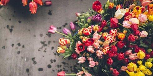 Цветы как способ заработать