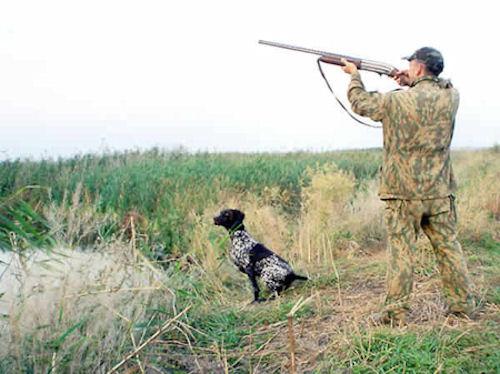 Культура охотника и охоты