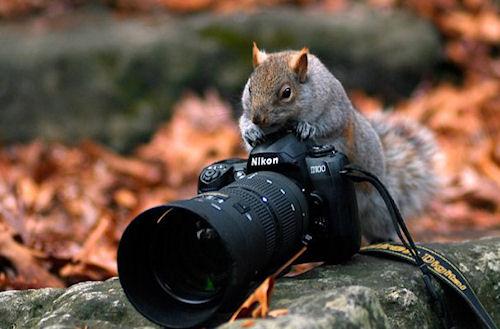 О чем говорить с фотографом?