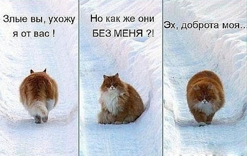 Статусы для Одноклассников на Новый год
