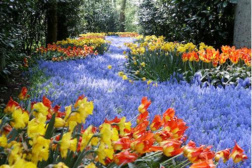 Весенние цветы в ландшафтном дизайне