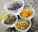 Травяные сборы для лечения радикулита