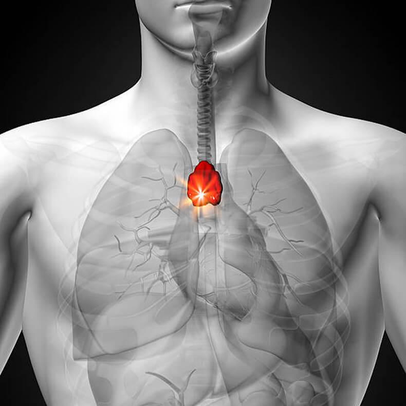 Цинк для укрепления иммунной системы