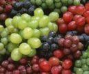 Определена ягода, которая способствует омоложению организма